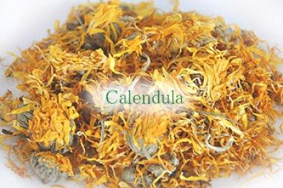 画像1: Herbs & Timothy / Calendula & Dandelion