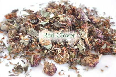 画像2: Herbs & Timothy / Rose Buds & Red Clover